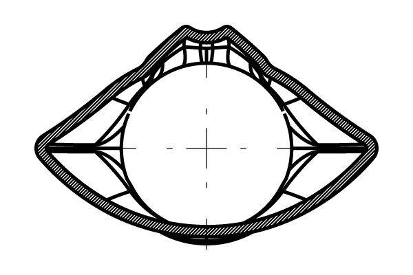 arb_concept_carbone_profil