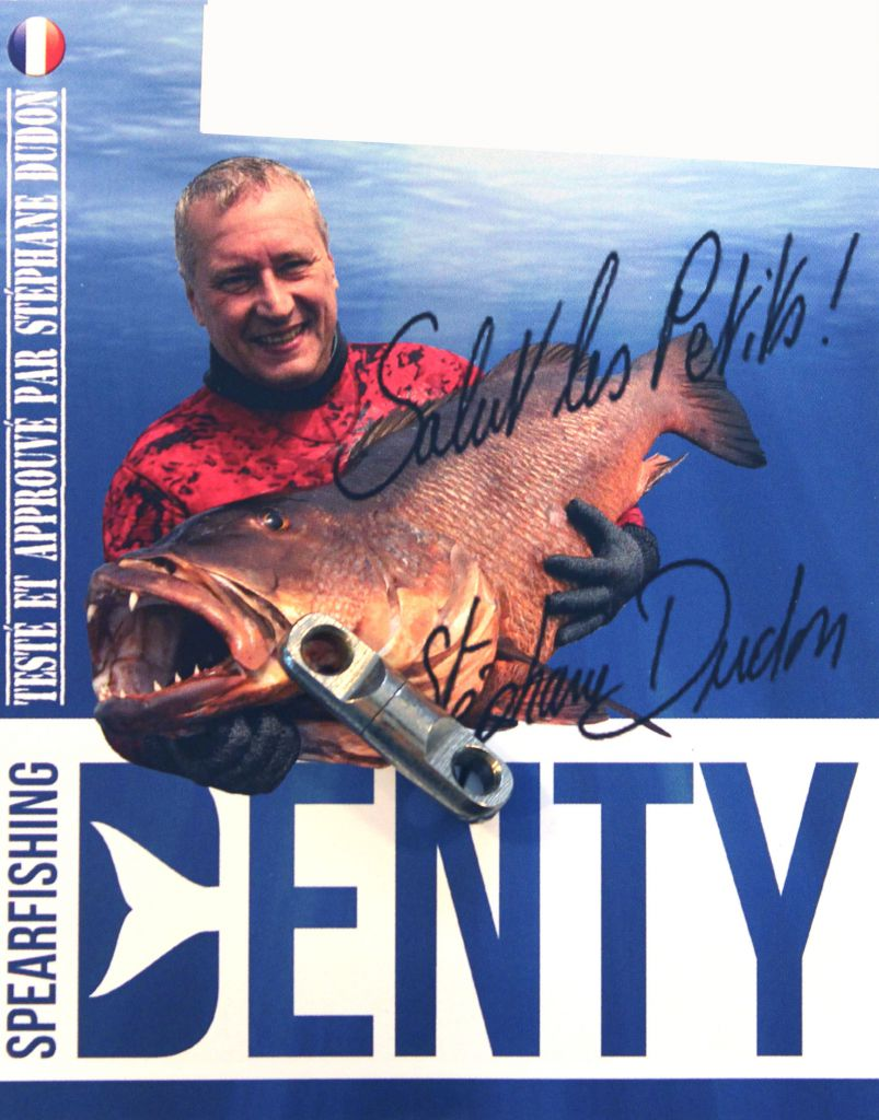 Emerillon Simple  Denty Spearfishing